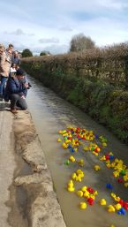 Great day Brookhouse rubber duck race